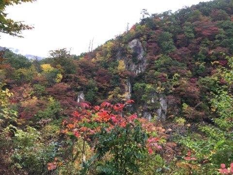 鳴子峡紅葉